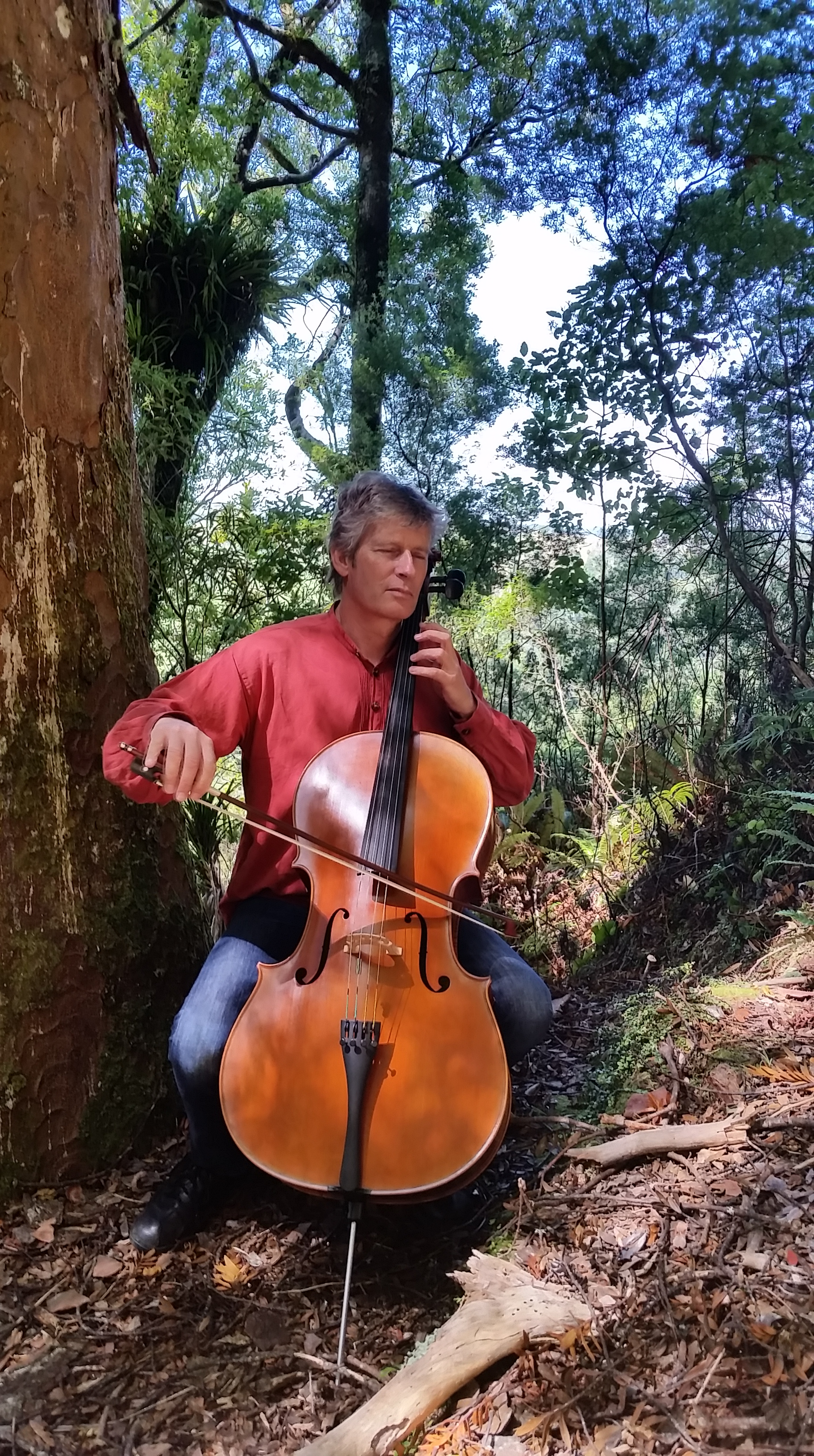 Raeul cello singing tree