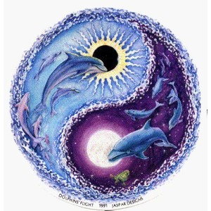 Dolphins in yin yang