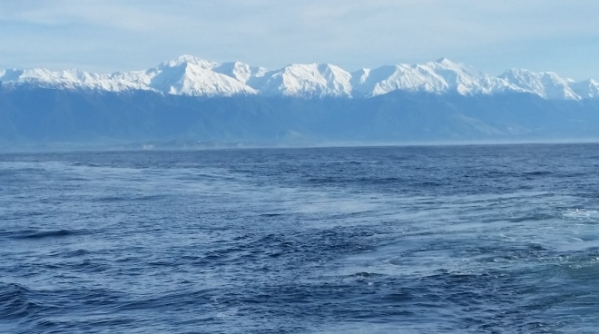 Ocean and Mountains from sea Kaikoura 2017